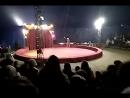 Начало представления. Цирк шапито .п.Локоть 21.04.18