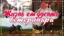 VLOG : Прощание с Медеей и трудности студента-ветеринара