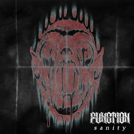 Function альбом Sanity