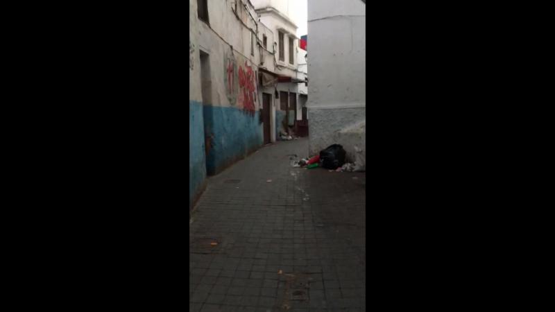 Касабланка раннее утро