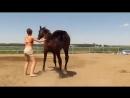 Když už to ani kůň nemůže vydržet