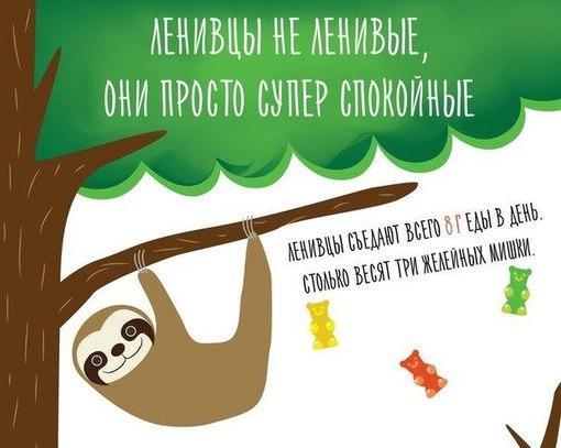 Знакомства ланивци контакт
