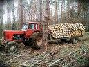 Zrywka drewna Bieszczady 5