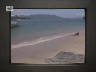 «Секрет тропиканки» - Сериал, который хочется разделить с подругой