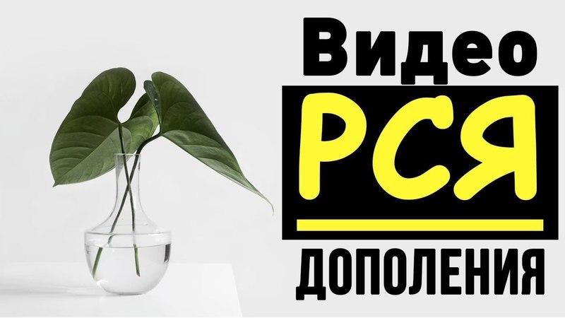 Видеодополнения. Видео объявления в Яндекс Директ.