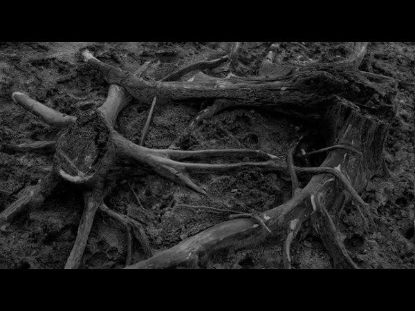 Instinct Primal Purba Forest Ritual teaser смотреть онлайн без регистрации