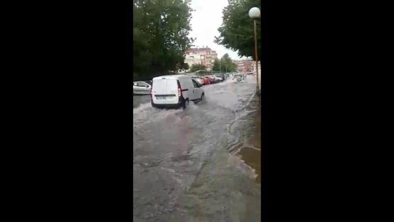 дождь в помории