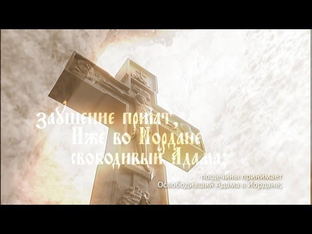 Арт-группа LARGO ДНЕСЬ ВИСИТ НА ДРЕВЕ
