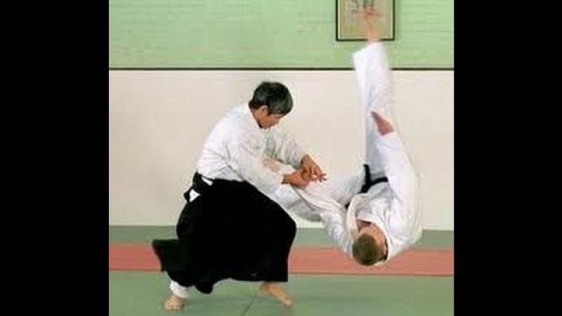 Minoru Kanetsuka Sensei aikido demo video, London - BAF