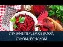 ЛЕЧЕНИЕ КУР народными средствами перцем свеклой луком и чесноком Часть 15