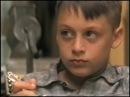Фильмы о лошадях Аманда 1996
