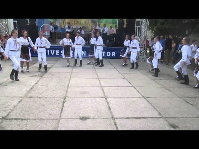 Dansul Coasa Ciocilteni