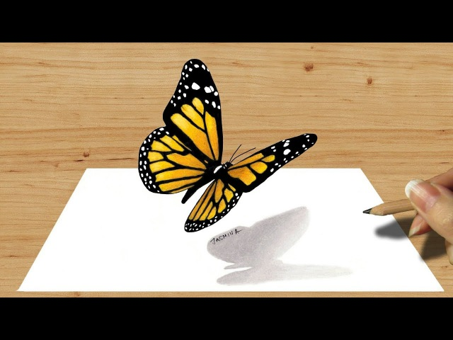 3D Colored Pencil Drawing of Butterfly - Speed Draw   Jasmina Susak 3D Art