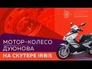 Мотор колесо Дуюнова на скутере Irbis Grace