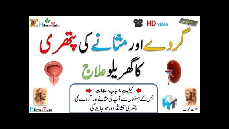 Kidney and bladder / kidney stone treatment at home / bladder stones treatment /