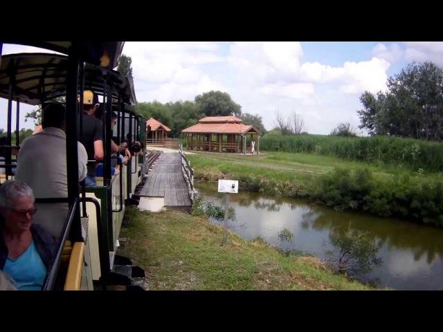 Utazás a Hortobágyi Kisvasúton/Travel by Narrow gauge Railway of Hortobágy [FULL HD!]