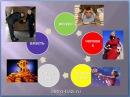 Вводная 10 методов определения силы Стихии Личности 1 Видеокурс Китайской Астрол