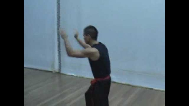Southern Praying Mantis Kung Fu (Chow Gar): Fut Sau Form