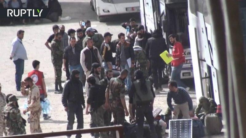В городе Хараста продолжается вывод боевиков и членов их семей из Восточной Гуты