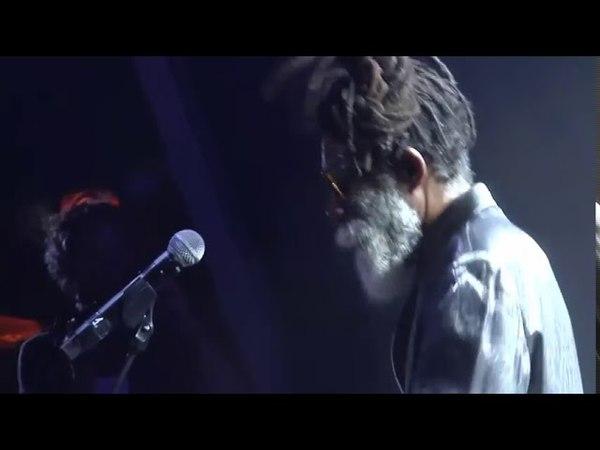 Don Carlos - Hog And Goat [Live] [Rototom Sunsplash 2017]