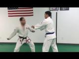 Strikes in Gracie Jiu-Jitsu #самооборона
