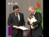 Путину подарили щенка по кличке Верный