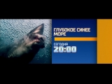 Глубокое синее море 28 февраля на РЕН ТВ