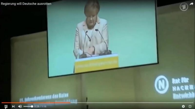 Ist die AfD eine Systempartei- Was haben Janich u- Merkel u-a- damit zu tun