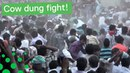 People Throw Cow Dung at Each Other in Annual Festival