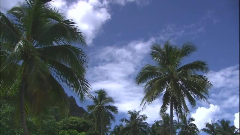 Lîle de Tahiti, en Polynésie Française.