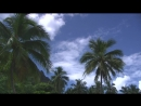 L'île de Tahiti en Polynésie Française