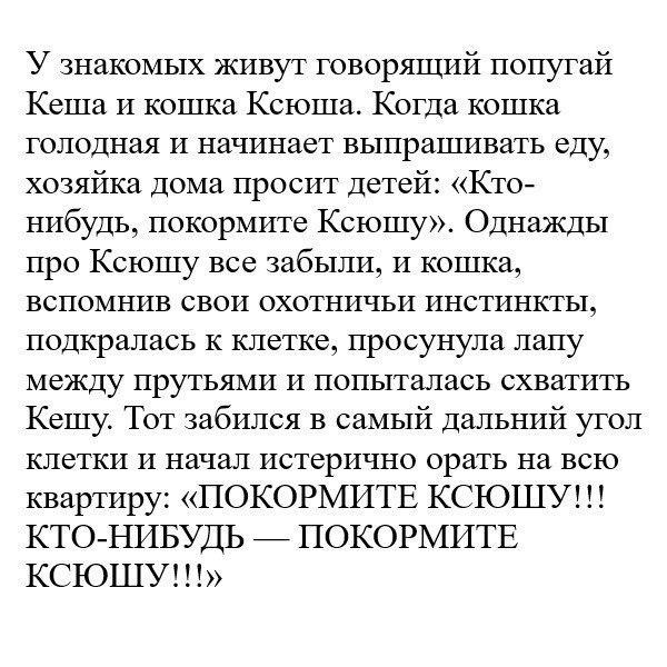 Фото №456252863 со страницы Юлии Гуровой