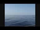 Архипо-Осиповка. Чёрное море. Морская прогулка.