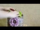 Флористика Цветочная композиция в Шляпной Коробке (Мастер класс)