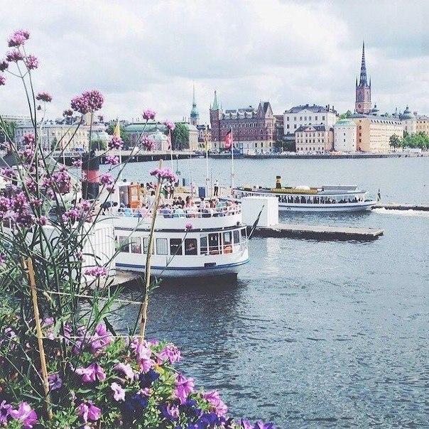 Прямые рейсы в Стокгольм всего за 1400 рублей туда-обратно из Вильнюса