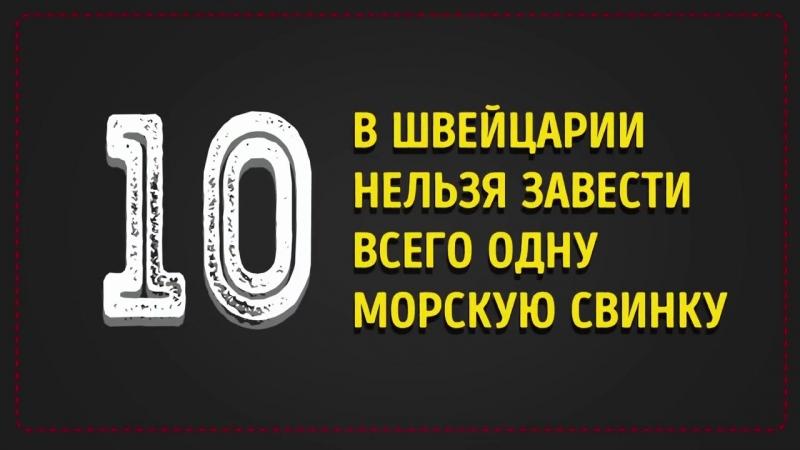 [AdMe.ru - Сайт о творчестве] 15 Нелепых Фактов, Которые Оказались Правдой