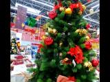 ✔ Online ???   #а вы уже купили елку к Новому году?#   #мега#торговыйцентр#кстово#готовимсякновомугоду#   ?