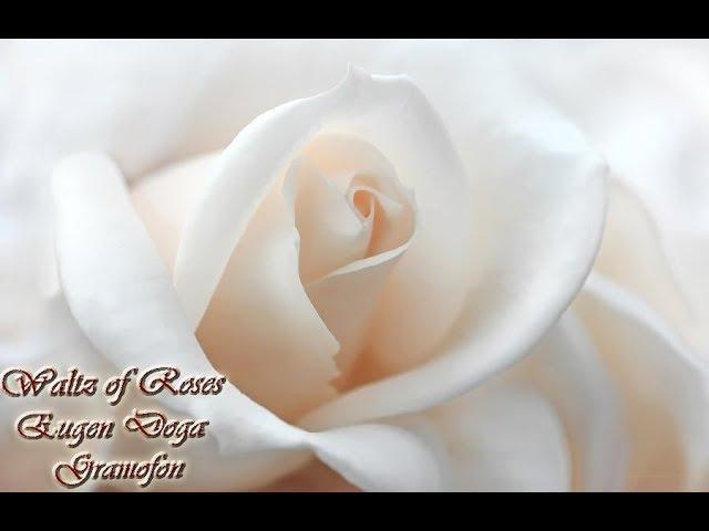 Eugen Doga - Gramofon | Waltz of Roses