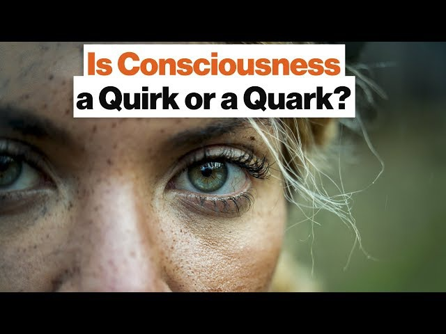 Everything Is Made of Quarks—Why Are Only Some Things Conscious? | Max Tegmark