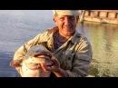 2014.07.11 ЖЕСТЬ СОМ НА КОЛЬЦО 17 кг/Рыбалка на каме/Лещ на кольцо
