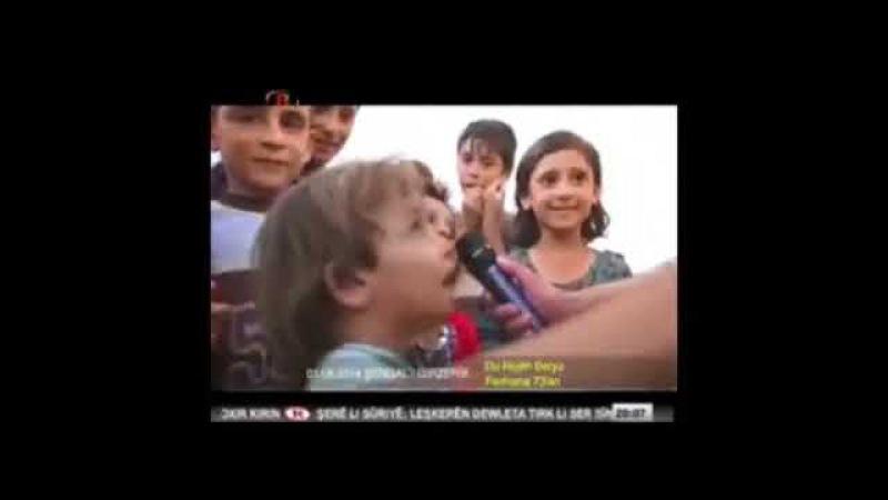 ŞENGAL BELGESELİ RONAHİ TV