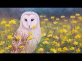 Barn Owl Acrylic Painting Tutorial Realistic Step by Step Tips and Tricks LIVE