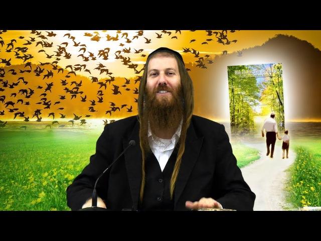[77] ¿Perfecto Esposo – Insatisfecha Esposa? / En el Jardín de la Fe || Rab Yonatán D. Galed