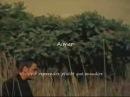 Mario Pelchat - Aimer [Paroles]