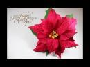 Пуансеттия из гофрированной бумаги Мастер-класс Цветок РОЖДЕСТВЕНСКАЯ ЗВЕЗДА из бумаги