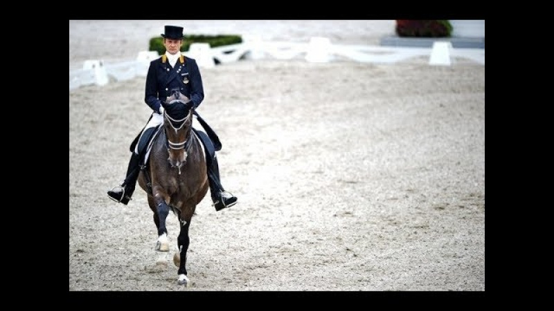 ~ Equestrian sport ~ Walk the moon ~ Конный спорт ~