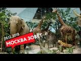 29.12 | МОСКВА ЗОВЁТ в музеи!