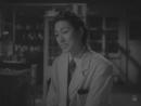 Shiroi yajuu (Mikio Naruse, 1950)
