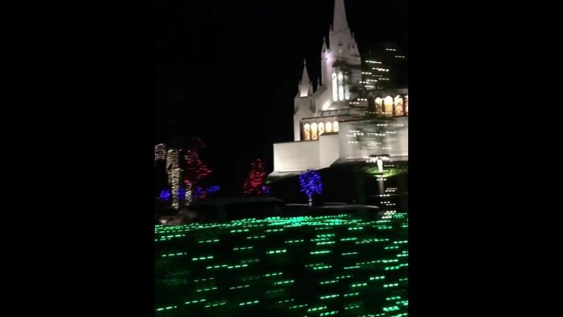 Сан - Диего готовится к Рождеству. Тепло, красиво и просто классно 😊👍. San - Diego, CA, USA 🇺🇸