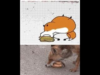 Жадная лисичка